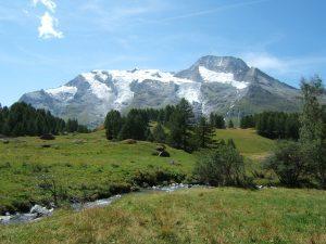 Monal Mont Pourri mountain, France