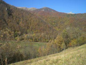 Valle Pesio Valley, Italy
