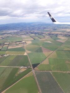 20191208_142624 - Neuseeland - Südinsel - Christchurch - Landwirtschaft - Acker - Wiese