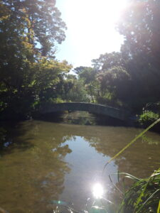 20191208_180652_new- Neuseeland - Christchurch - Botanischer Garten - Teich - Brücke - Reflektion im Wasser