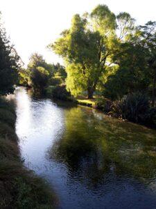 20191208_192055 - Neuseeland - Christchurch - Botanischer Garten - Fluss Avon