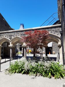 20191209_131217 - Neuseeland - Christchurch - Christchurch Art Centre