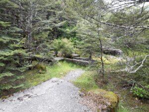20191210_130212 - Neuseeland - TranzAlpine Bahn - Arthur's Pass - Fluss Bealy - Otiratunnel - Ruinen