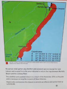 20191211_115311 - Neuseeland - Kaikoura - Erdbeben 2016 - Pazifik - Fischerei - Umweltschutz