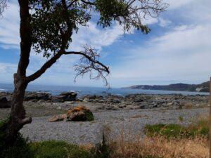 20191211_120720 - Neuseeland - Kaikoura - Erdbeben 2016 - Pazifik - Küstenlinie