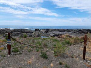 20191211_120750 - Neuseeland - Kaikoura - Erdbeben 2016 - Pazifik - Küstenlinie