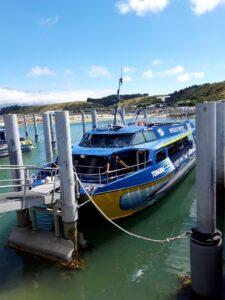 20191212_105816 - Neuseeland - Kaikoura - Pottwale beobachten - Boot - Hafen