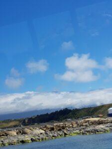 20191212_110357 - Neuseeland - Kaikoura - Pottwale beobachten - Pazifik - Kaikoura Ranges - Gebirgskette - Wolken