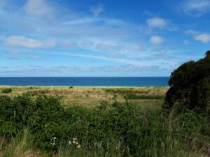 20191212_155817 - Neuseeland - Kaikoura - Eisenbahn- Pazifik- blauer Himmel - Aussicht