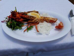 20191213_131002 - Neuseeland - Kaikoura - Crayfish - Süsswasserkrebs - Kaikoura Seafood Barbecue Kiosk