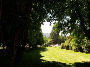 20191214_142535- Neuseeland - Canterbury NZ - Hanmer Springs - St. Mary's Hospital - grüner rasen - Licht und Schatten