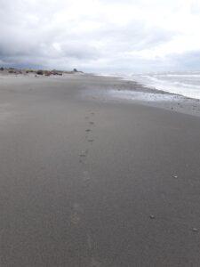 20191217_102532 - Neuseeland - Westcoast - Hokitika - Strand - Tasman Meer - Fussstapfen
