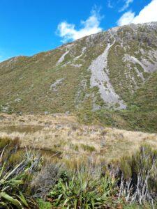 20191218_101133 - Neuseeland - Westcaost - Canterbury - Arthur's Pass - kleiner Bergsee - Mountain flax (Phormium colensoi) - Geröllhang