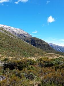 20191218_101915 - Neuseeland - Westcaost - Canterbury - Arthur's Pass
