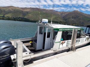 20191221_131925- Neuseeland - Otago - Wanaka -Wanaka See - eocTours