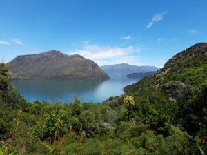 "20191221_142856 - Neuseeland - Otago - Wanaka - Wanaka See - Mou Waho Insel - Landenge ""The Neck"""