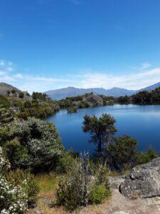 20191221_150240 - Neuseeland - Otago - Wanaka - Wanaka See - INsel Mou Wahu - Arethusa Pool