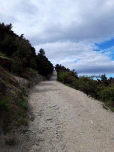 20191222_112257 - Neuseeland - Otago - Wanaka - Mt. Iron - roche moutonnée - Rundhöcker - steiler Weg