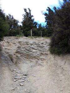 20191222_113609 - Neuseeland - Otago - Wanaka - Mt. Iron - roche moutonnée - Rundhöcker - steiler Weg