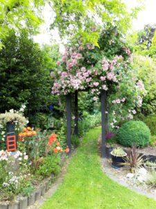 20191222_141945 - Neuseeland - Otago - Wanaka - farbenfroher Garten - Rosa Rosen