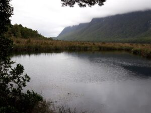 20191225_092544 - Neuseeland - Fiordland - Te Anau Downs (NZ) - Eglinton Valley Tal - Mirror Lakes Seen