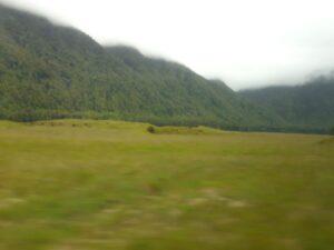 "20191225_094902 - Neuseeland - Fiordland - Te Anau Downs (NZ) - Eglinton Valley Tal - ""Kobs Flat"" - Rundhöcker"
