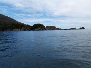 20191225_122315 - Neuseeland - Fiordland - Te Anau (NZ) - Milford Sound - Tasman Sea Meer - St. Anne's Point - Leuchtturm