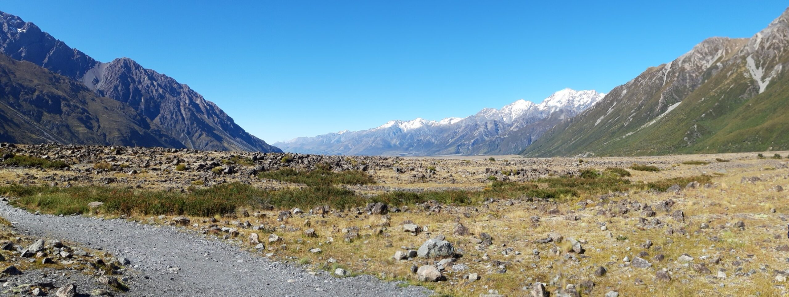 20191228_100357 (2) - Neuseeland - Canterbury (NZ) - Mount Cook Village (NZ) - Panoramablick - Tasman Valley Tal - Burnett Mountains Bergkette  - Ben Ohau Bergkette  - bewaldete Berghänge  - Mt. Cook Range Bergkette - schneebedeckter Berggipfel