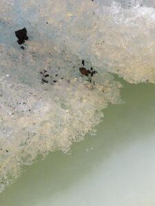 20191228_104141 - Neuseeland - Canterbury NZ - Mount Cook Village (NZ) - Bootsfahrt - Zodiac - Tasman Lake See - blauer Himmel - Eisberg - schmutziges Eis
