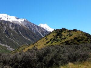 20191228_112708 - Neuseeland - Canterbury NZ - Mount Cook Village (NZ) - Aoraki/Mt. Cook (3.724M) - blauer himmel, weisse Wolken - grüne Moränen